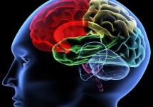 ŚLĄSKI PROGRAM OCHRONY ZDROWIA PSYCHICZNEGO NA LATA 2013-2020
